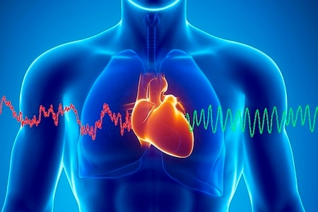 Learn About Your Heart Health with the Heart Sound Recorder (HSR)